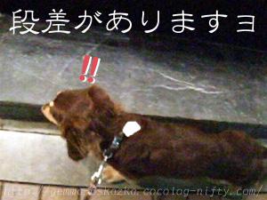 18_0906_01_Step