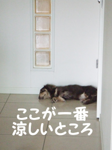 02_0908_04_Sl