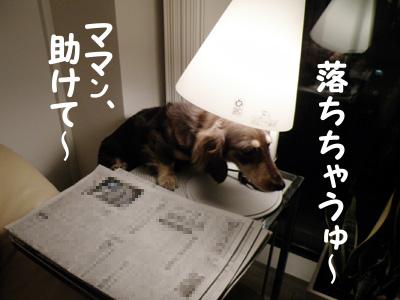 04_0908_01_MG