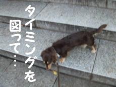 07_0908_03_ST