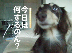 08_0908_05_WT