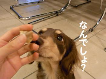 04_0910_02_GM