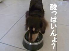 09_0910_04_aP2