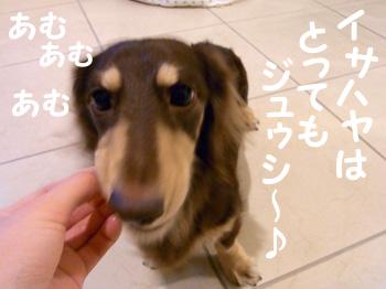14_0910_03_GJ