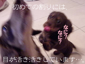 1001_21_03KW