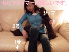 1001_08_01G2