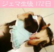 1002_02_08GC