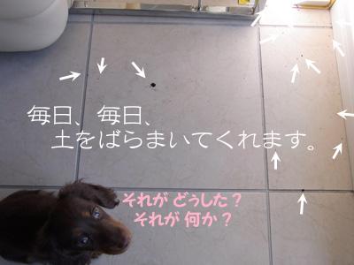 1002_04_02CD2