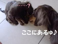 1002_06_07CH