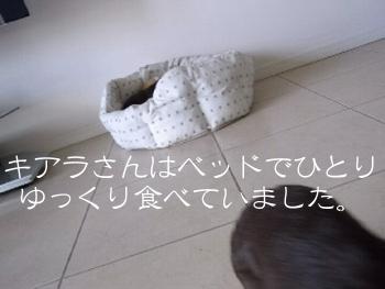 1002_06_16CA