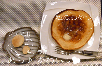 1003_03_04HC