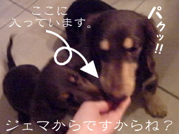1003_03_09GC