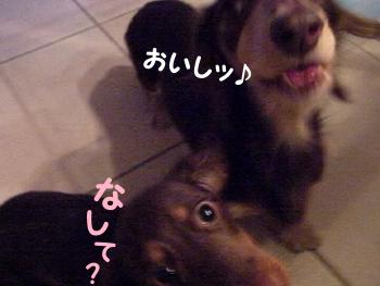 1003_03_10WC