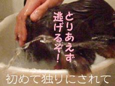 1004_09_03FS