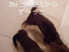 1004_14_05GC