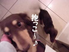 1004_14_08GM