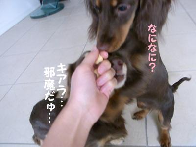 1004_17_05CM