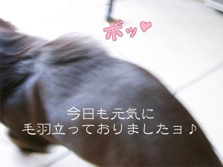 1009_04_05CB