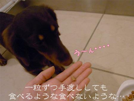 1010_11_04C1