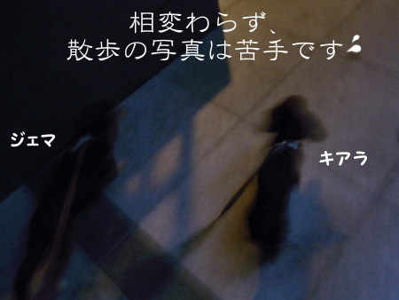1012_03_01GC