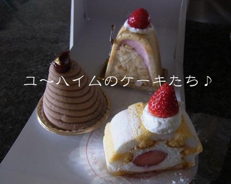 1204_01_01YH