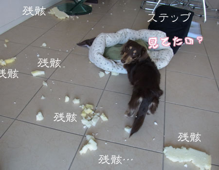 1204_08_03GO