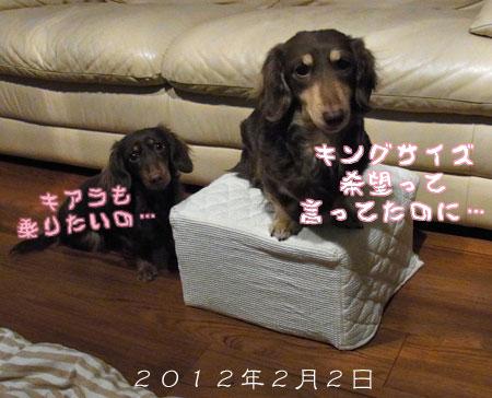 1204_08_11GC