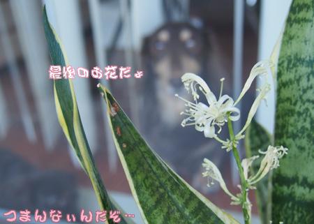 2014_01_12GC